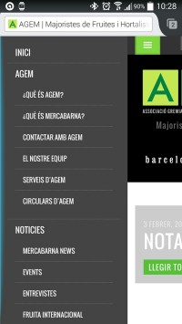 AGEM movil menu