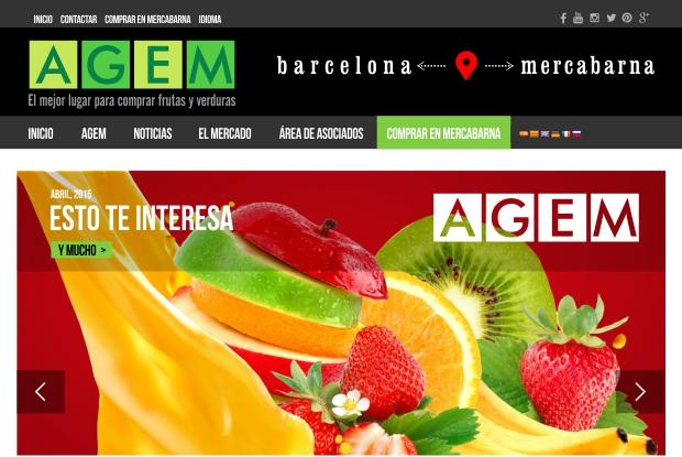 AGEM. Una web muy fresca.
